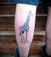 фото тату ЖИРАФ (Tattoo giraffe) (значение) — пример рисунка — 041 tatufoto.com