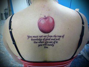 фото тату С ЯБЛОКОМ (Tattoo apple photo) (значение) - пример рисунка - 009 tatufoto.com