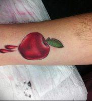 фото тату С ЯБЛОКОМ (Tattoo apple photo) (значение) — пример рисунка — 031 tatufoto.com