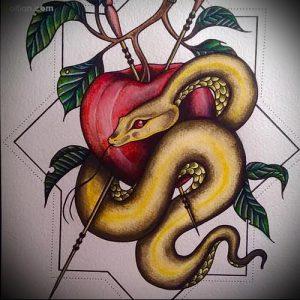 фото тату С ЯБЛОКОМ (Tattoo apple photo) (значение) - пример рисунка - 032 tatufoto.com