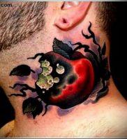 фото тату С ЯБЛОКОМ (Tattoo apple photo) (значение) — пример рисунка — 036 tatufoto.com