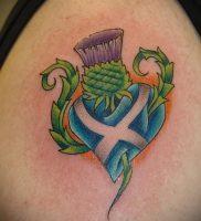 Фото татуировки чертополох — пример рисунка — 26052017 — пример — 002 Tattoo thistles
