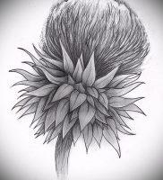 Фото татуировки чертополох — пример рисунка — 26052017 — пример — 008 Tattoo thistles