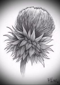 Фото татуировки чертополох - пример рисунка - 26052017 - пример - 008 Tattoo thistles