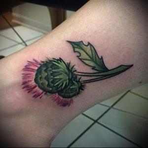 Фото татуировки чертополох - пример рисунка - 26052017 - пример - 011 Tattoo thistles