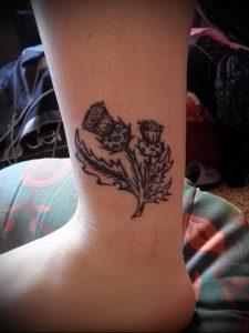 Фото татуировки чертополох - пример рисунка - 26052017 - пример - 012 Tattoo thistles