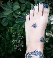 Фото татуировки чертополох — пример рисунка — 26052017 — пример — 013 Tattoo thistles