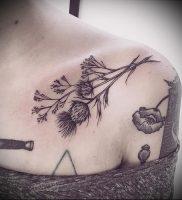 Фото татуировки чертополох — пример рисунка — 26052017 — пример — 016 Tattoo thistles