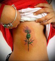 Фото татуировки чертополох — пример рисунка — 26052017 — пример — 018 Tattoo thistles