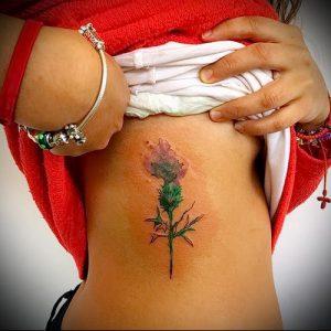 Фото татуировки чертополох - пример рисунка - 26052017 - пример - 018 Tattoo thistles