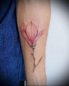 Фото тату магнолия - 30052017 - пример - 001 Magnolia tattoo