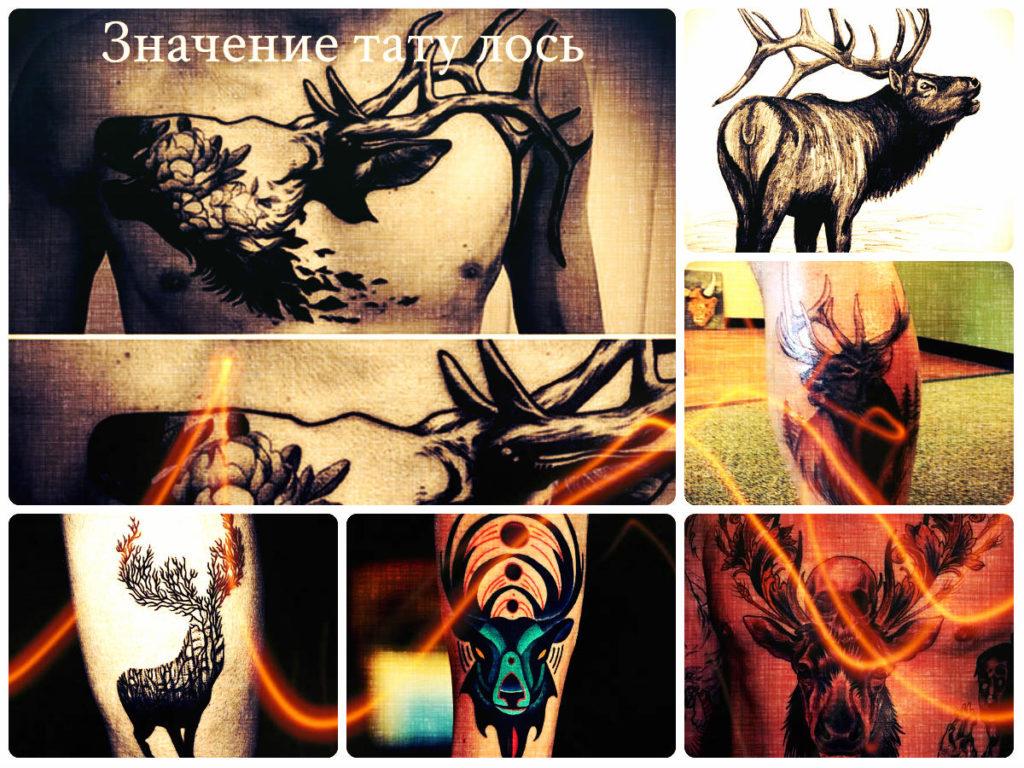 Значение тату лось - фото примеры татуировок - рисунки