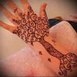 Фото Мехенди на ладони - 17062017 - пример - 077 Mehendi in the palm of your hand