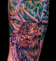 Фото тату лось — 30052017 — пример — 009 tattoo elk
