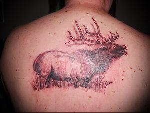 Фото тату лось - 30052017 - пример - 010 tattoo elk