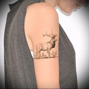 Фото тату лось - 30052017 - пример - 049 tattoo elk.989425176_ejbf