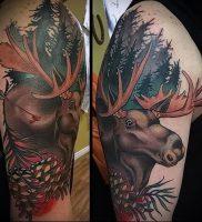 Фото тату лось — 30052017 — пример — 051 tattoo elk