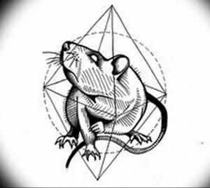 фото тату крыса от 27.07.2017 №012 - Rat tattoo_tattoo-photo.ru