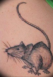 фото тату крыса от 27.07.2017 №050 - Rat tattoo_tattoo-photo.ru