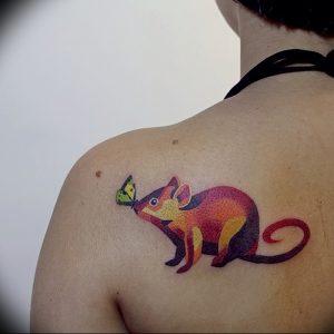 фото тату крыса от 27.07.2017 №058 - Rat tattoo_tattoo-photo.ru