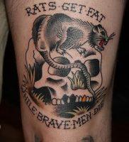 фото тату крыса от 27.07.2017 №087 — Rat tattoo_tattoo-photo.ru