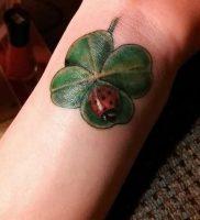 фото тату трилистник — клевер от 21.08.2017 №114 — Cloverleaf tattoo — tattoo-photo.ru