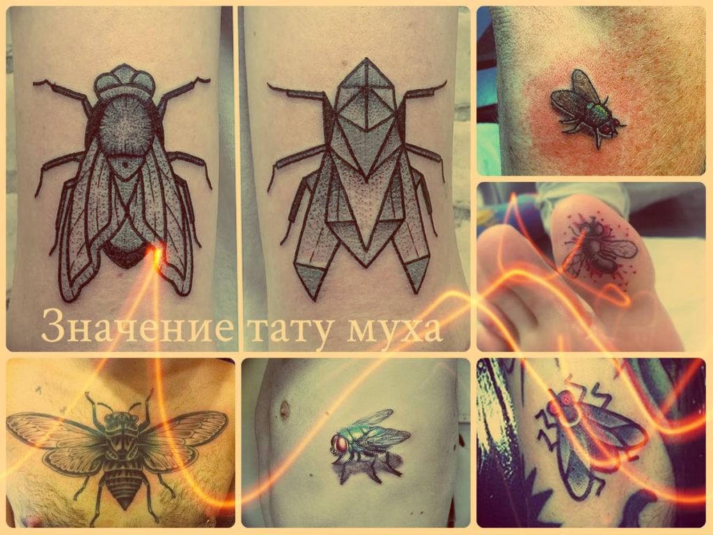 Значение тату муха - коллекция фото примеров