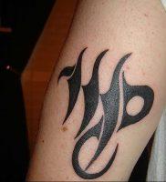 фото тату знак зодиака Дева от 30.09.2017 №004 — tattoo zodiac sign Virgo — tattoo-photo.ru