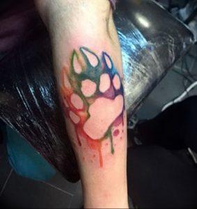 фото тату медвежья лапа от 30.09.2017 №025 - bear paw tattoo - tattoo-photo.ru
