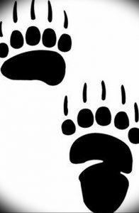 фото тату медвежья лапа от 30.09.2017 №088 - bear paw tattoo - tattoo-photo.ru