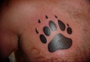 фото тату медвежья лапа от 30.09.2017 №094 - bear paw tattoo - tattoo-photo.ru
