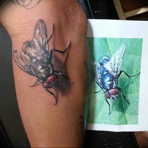 фото тату муха от 22.09.2017 №003 - Fly Tattoo - tattoo-photo.ru