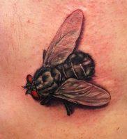 фото тату муха от 22.09.2017 №008 — Fly Tattoo — tattoo-photo.ru