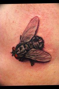 фото тату муха от 22.09.2017 №008 - Fly Tattoo - tattoo-photo.ru