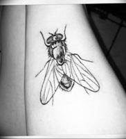 фото тату муха от 22.09.2017 №011 — Fly Tattoo — tattoo-photo.ru