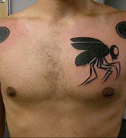 фото тату муха от 22.09.2017 №016 — Fly Tattoo — tattoo-photo.ru