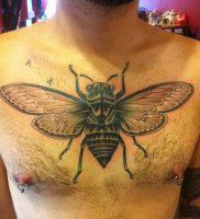 фото тату муха от 22.09.2017 №018 — Fly Tattoo — tattoo-photo.ru