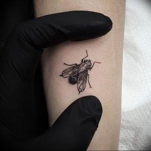 фото тату муха от 22.09.2017 №033 - Fly Tattoo - tattoo-photo.ru