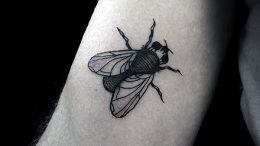 фото тату муха от 22.09.2017 №049 - Fly Tattoo - tattoo-photo.ru