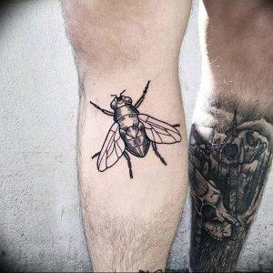 фото тату муха от 22.09.2017 №050 - Fly Tattoo - tattoo-photo.ru