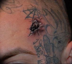 фото тату муха от 22.09.2017 №057 - Fly Tattoo - tattoo-photo.ru