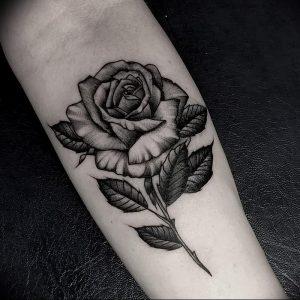 фото тату роза от 30.09.2017 №007 - rose tattoo - tattoo-photo.ru
