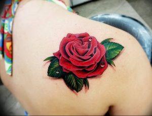 фото тату роза от 30.09.2017 №013 - rose tattoo - tattoo-photo.ru
