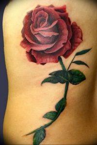фото тату роза от 30.09.2017 №015 - rose tattoo - tattoo-photo.ru
