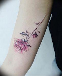 фото тату роза от 30.09.2017 №039 - rose tattoo - tattoo-photo.ru