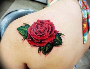 фото тату роза от 30.09.2017 №052 - rose tattoo - tattoo-photo.ru