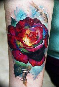 фото тату роза от 30.09.2017 №066 - rose tattoo - tattoo-photo.ru