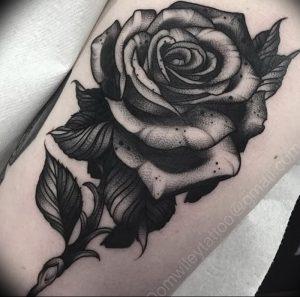 фото тату роза от 30.09.2017 №090 - rose tattoo - tattoo-photo.ru