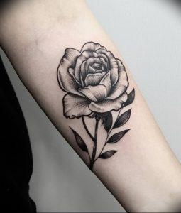 фото тату роза от 30.09.2017 №091 - rose tattoo - tattoo-photo.ru