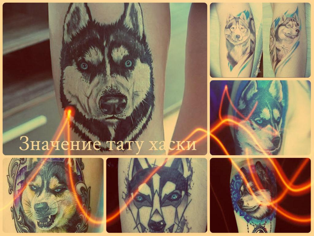 Значение тату хаски - коллекция фото готовых татуировок